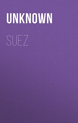 Unknown Unknown - Suez