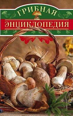 Неустановленный автор - Грибная энциклопедия
