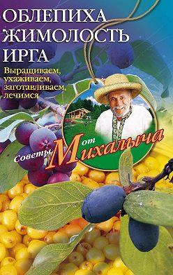 Николай Звонарев - Облепиха, жимолость, ирга. Выращиваем, ухаживаем, заготавливаем, лечимся