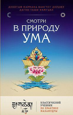 Дагпо Намгьял - Смотри в природу ума. Классический учебник по практике Махамудры
