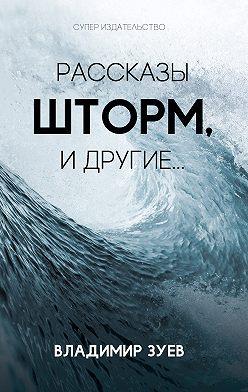 Владимир Зуев - Рассказы. Шторм и другие…
