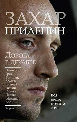 Захар Прилепин - Дорога в декабре (сборник)