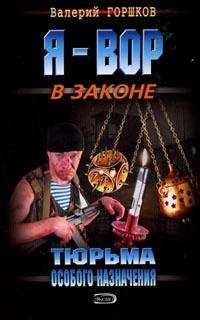 Валерий Горшков - Тюрьма особого назначения