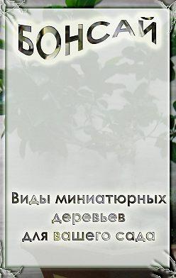 Илья Мельников - Виды миниатюрных деревьев для вашего сада