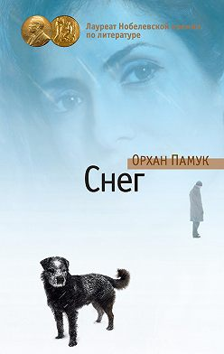 Орхан Памук - Снег