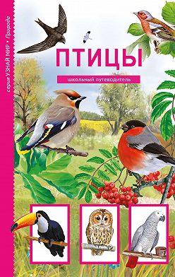 Юлия Дунаева - Птицы