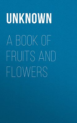 Unknown Unknown - A Book of Fruits and Flowers