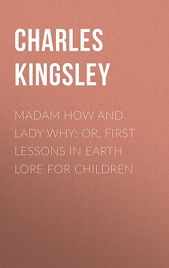 Charles Kingsley - Madam How and Lady Why; Or, First Lessons in Earth Lore for Children