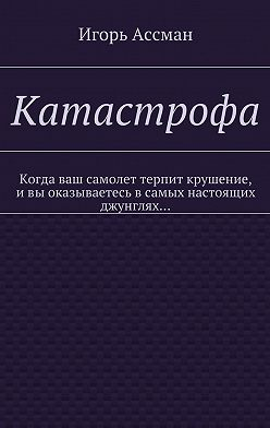 Игорь Ассман - Катастрофа