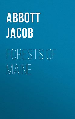 Jacob Abbott - Forests of Maine