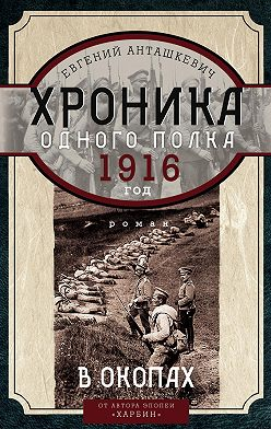 Евгений Анташкевич - Хроника одного полка. 1916 год. В окопах