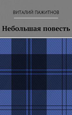 Виталий Пажитнов - Небольшая повесть