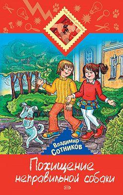 Владимир Сотников - Похищение неправильной собаки