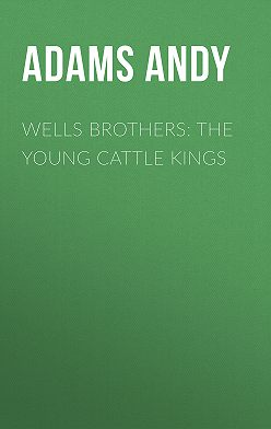 Andy Adams - Wells Brothers: The Young Cattle Kings