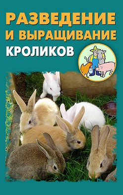 Илья Мельников - Разведение и выращивание кроликов