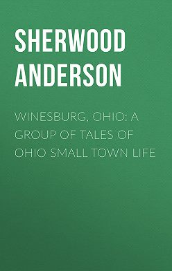 Sherwood Anderson - Winesburg, Ohio: A Group of Tales of Ohio Small Town Life