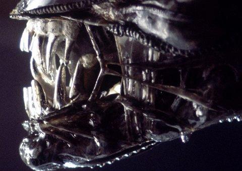 «Чужой»: фильм и книга о космическом монстре отмечают юбилей