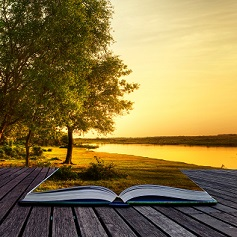 Июньский буклист: 15 популярных книг
