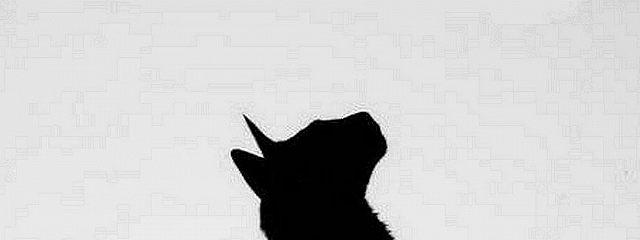 Когда я стану кошкой. Часть 1