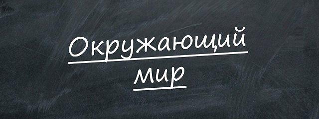"""""""Синичкин день"""""""