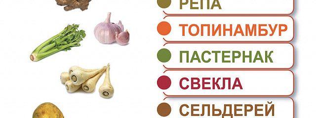 Имбирь и его братья-целители: хрен, репа, топинамбур, пастернак, свекла, сельдерей, лук, чеснок, цикорий, петрушка