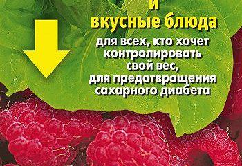 Сахароснижающие растения и вкусные блюда для всех, кто хочет контролировать свой вес, для предотвращения сахарного диабета