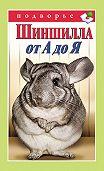 Виктор Горбунов - Шиншилла от А до Я
