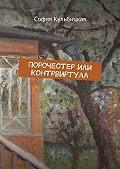 София Кульбицкая -Порочестер или Контрвиртуал
