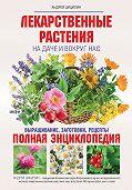 Андрей Николаевич Цицилин -Лекарственные растения на даче и вокруг нас. Полная энциклопедия