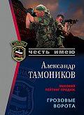Александр Тамоников -Грозовые ворота