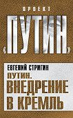 Евгений Стригин - Путин. Внедрение в Кремль
