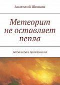 Анатолий Шинкин - Метеорит неоставляет пепла