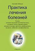 Евгений Лебедев -Практика лечения болезней
