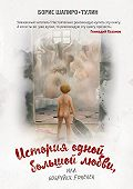Борис Шапиро-Тулин - История одной большой любви, или Бобруйск forever (сборник)