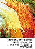 Шамиль Хисамбеев -Исследование структуры сознания подростков в среде дополнительного образования