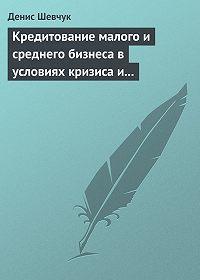 Денис Шевчук -Кредитование малого и среднего бизнеса в условиях кризиса и финансовой нестабильности