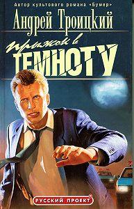 Андрей Троицкий -Прыжок в темноту