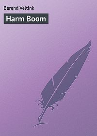 Berend Veltink - Harm Boom