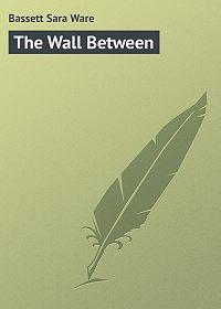 Sara Bassett -The Wall Between