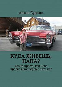 Антон Сурнин -Куда живешь, папа? Книга про то, как Сева провел свои первые пятьлет
