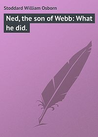 William Stoddard -Ned, the son of Webb: What he did.