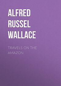 Alfred Wallace -Travels on the Amazon