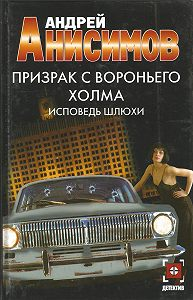 Андрей Анисимов -Призрак с Вороньего холма. Исповедь шлюхи