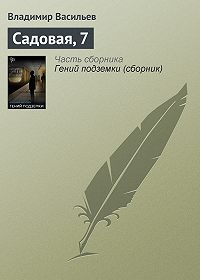 Владимир Васильев -Садовая, 7