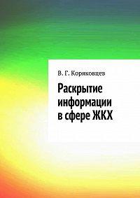 Василий Коряковцев - Раскрытие информации всфере ЖКХ