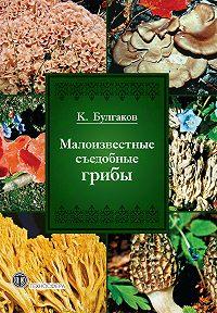 Касим Булгаков -Малоизвестные съедобные грибы