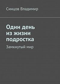 Владимир Синцов -Один день изжизни подростка. Замкнутыймир