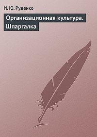 И. Ю. Руденко -Организационная культура. Шпаргалка