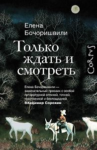 Елена Бочоришвили -Только ждать и смотреть