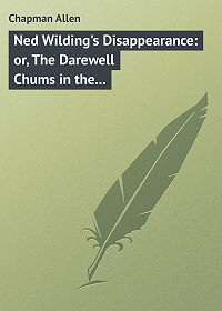 Allen Chapman -Ned Wilding's Disappearance: or, The Darewell Chums in the City